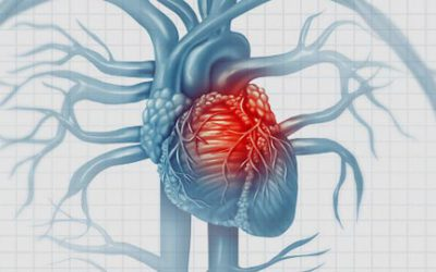 Menopause Associated with More Fat Around Heart, Raising Risk for Heart Disease
