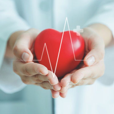 Cardiovascular Measures / Risk Factors